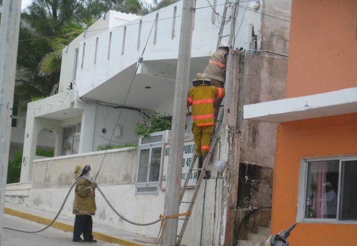 Bomberos retiraron paneles de una casa y de una bodega. (Lanrry Parra/SIPSE)