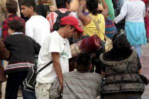 Fervor guadalupano en México