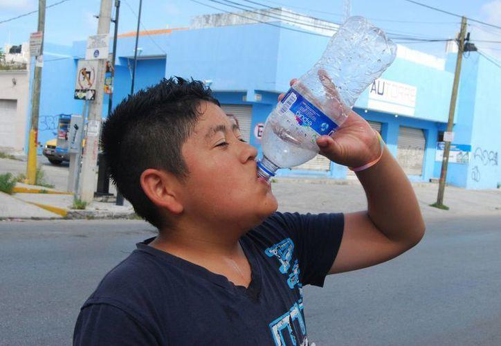 Recomiendan ingerir bastante agua y líquidos pero no bebidas que no estén recomendadas por un médico y usar filtro solar y ropa fresca pero no mangas cortas. (Archivo/SIPSE)