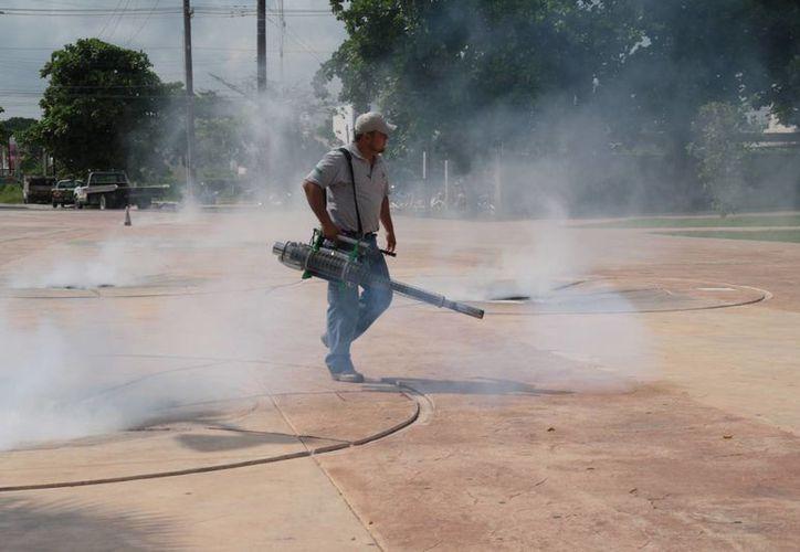 Anuncian labores de fumigación y abatización. (Julián Miranda/SIPSE)