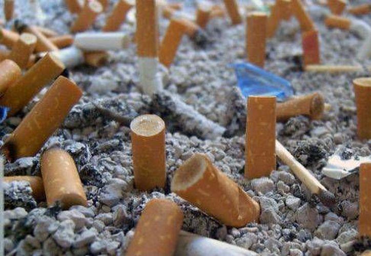 Reducir las colillas de cigarro y plásticos en las playas, es el objetivo principal de la campaña ambiental. (Luis Soto/SIPSE)