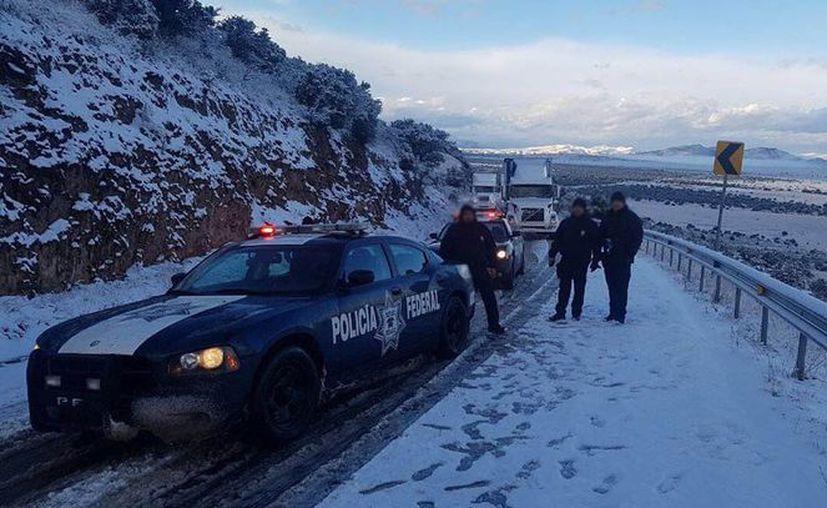 Bajas temperaturas afectan vialidad en Sonora. (Twitter)