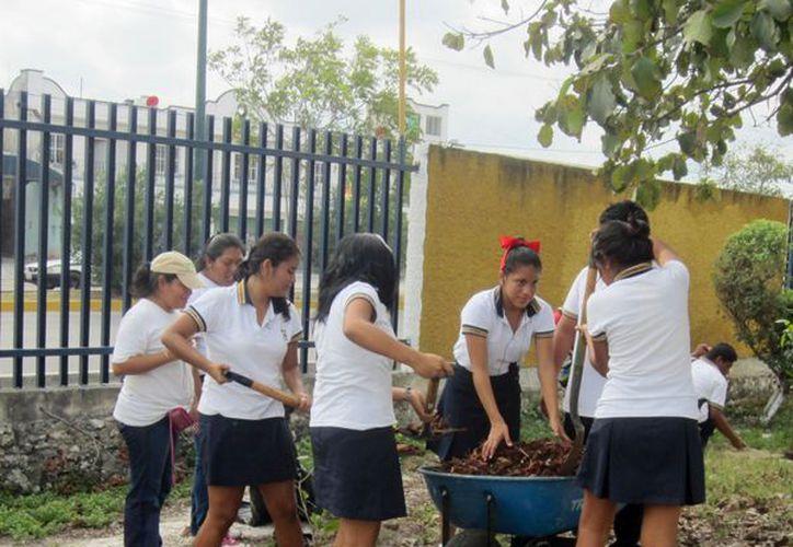 Las escuelas del primer nivel realizaron de forma puntual las actividades en beneficio del medio ambiente. (Tomás Álvarez/SIPSE)