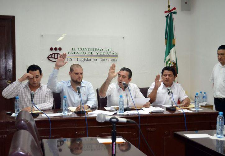 """Integrantes de la Comisión para la postulación """"Pánfilo Novelo"""". (Theany Ruz/SIPSE)"""