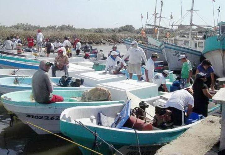 Durante el congreso, se realizará también la entrega de reconocimientos a personas relacionadas con la actividad pesquera en Yucatán. (SIPSE)