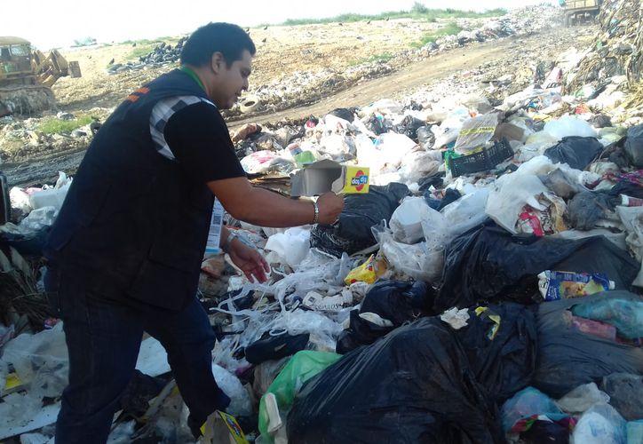 La Cofepris realizó inspecciones en el basurero de Chetumal en busca de más quesos TipTop con fecha de caducidad vencida, para evitar su comercialización ilegal. (Daniel Tejada/SIPSE)