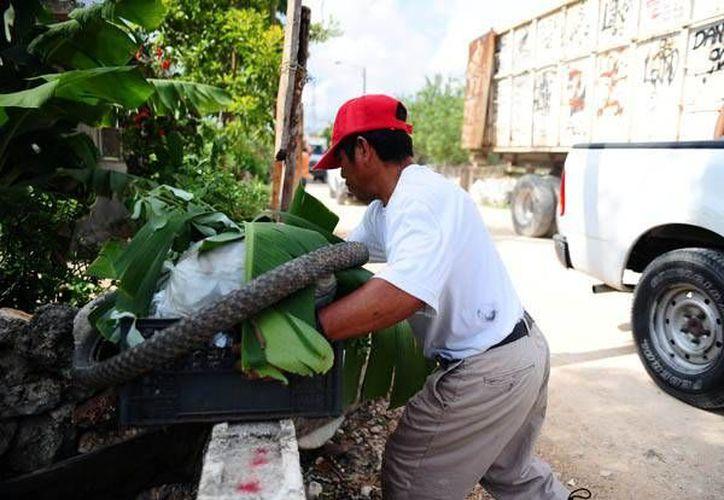 En lo que va del año se han levantado 25 toneladas de residuos sólidos. (Tomás Álvarez/SIPSE)
