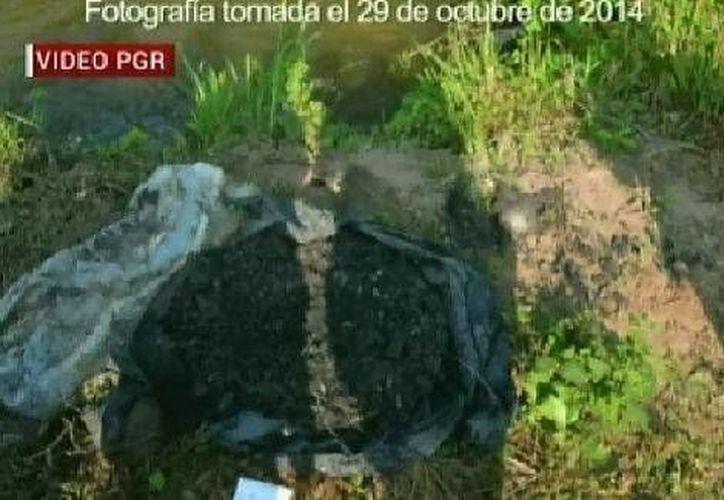 La fotografía de la bolsa tomada el 29 de octubre en el río San Juan. (Milenio)