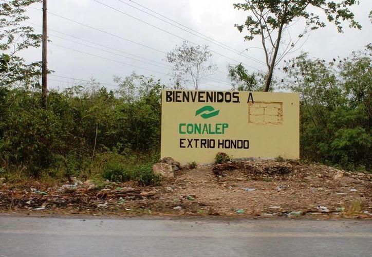 """El proyecto para la construcción del plantel de Conalep """"Río Hondo"""" aún no tiene fecha para iniciar con las obras. (Edgardo Rodríguez/SIPSE)"""