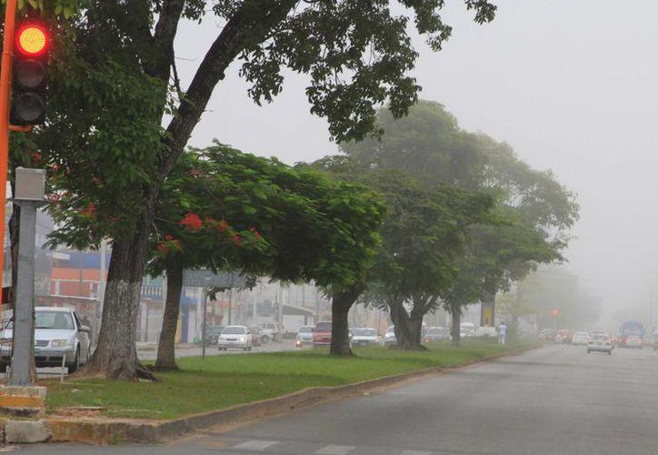 Las últimas semanas la temperatura ha permanecido en 29 grados centígrados. (Ángel Castilla/SIPSE)