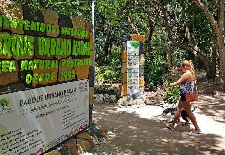 El instrumento toral integrará las normas de manejo, uso y aprovechamiento que puede tener el parque. (Jesús Tijerina/ SIPSE)