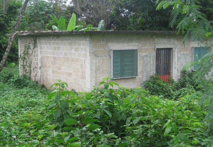 Los vecinos temen que haya un brote de dengue. (Javier Ortiz/SIPSE)