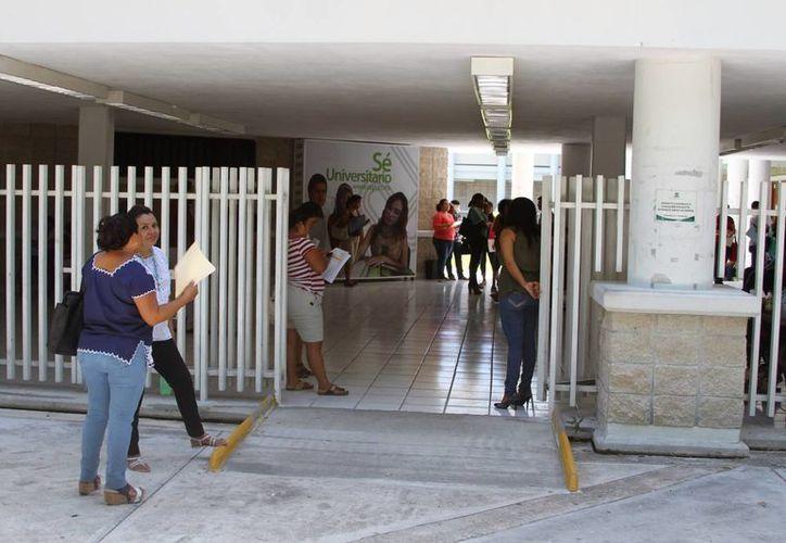 Compitieron contra 272 jóvenes en el país, interesados. (Carlos Horta/ SIPSE)