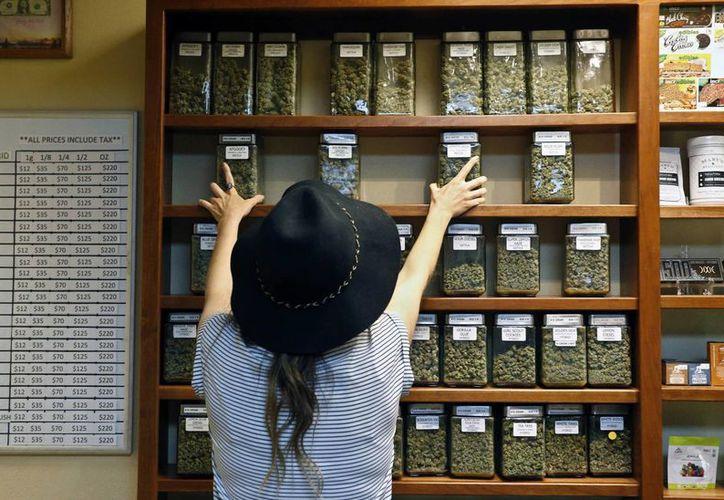 En varios estados de EU es legal el consumo de la marihuana para fines recreativos. (AP/Brennan Linsley)