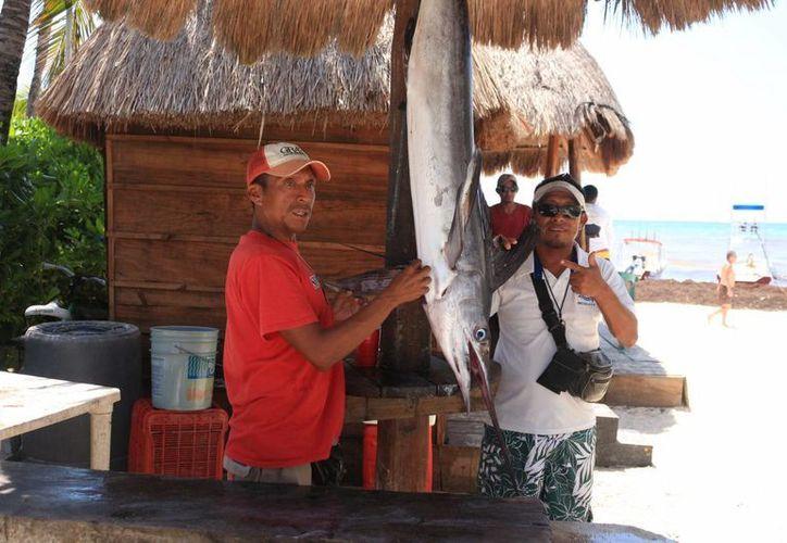 En el primer día de reapertura del puerto de Playa del Carmen un pescador capturó un marlín de 20 kilogramos. (Adrián Barreto/SIPSE)