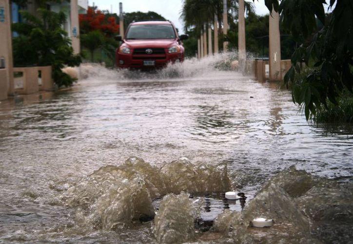 En algunas colonias de la ciudad se registraron rebosamientos de desagües pluviales debido a la basura, indicó Protección Civil.  (Octavio Martínez/SIPSE)