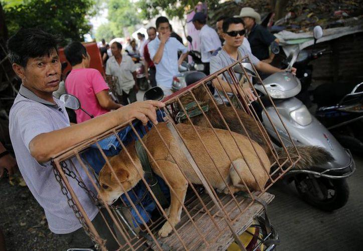 Un vendedor ofrece su mercancía en el mercado Dashichang, en Yulin, China. (EFE)