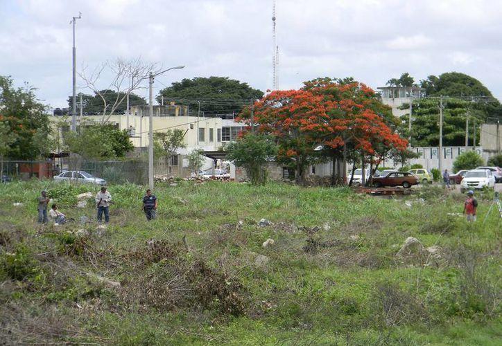 Trabajdores de la SOP del Estado comenzaron las labores de limpieza del terreno donde se construirá el edificio de las salas orales del Cereso. (Milenio Novedades)