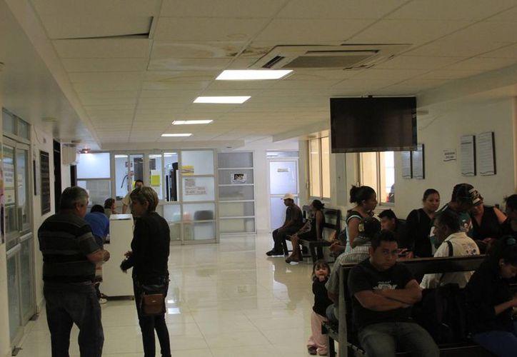 La entidad ha acumulado 992 casos de dengue, 684 clásicos, 308 hemorrágicos y dos muertes. (Ángel Castilla/SIPSE)
