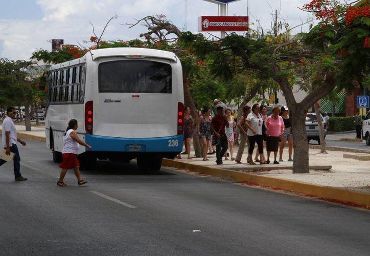 Algunas unidades de transporte público utilizan el carril central como paradero. (Tomás Álvarez/SIPSE)