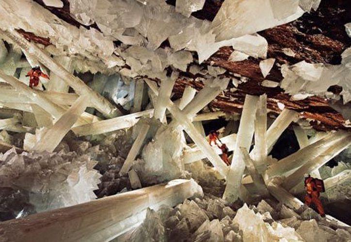 La Cueva de Naica alberga los cristales de selenita (yeso) más grandes del mundo y una antigüedad superior a los 250.000 años. (Contexto/Internet)
