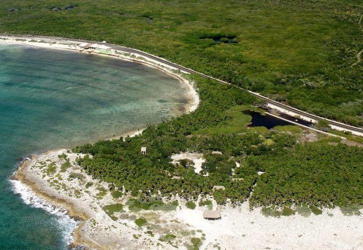 Tratan de no afectar el medio ambiente en la isla. (Julián Miranda/SIPSE)