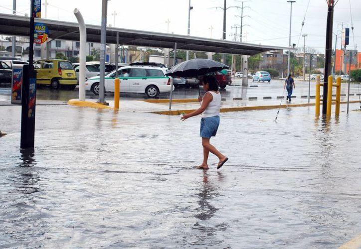 Estas lluvias tendrán un aproximado de 30 mililitros de agua por lo que no se pronostican riesgos para la ciudad. (Tomás Álvarez/SIPSE)