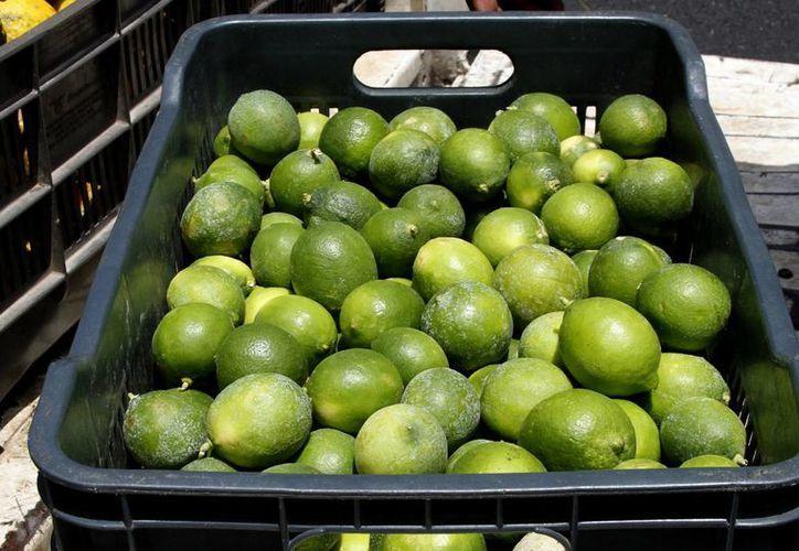 Según la Profeco, productores de limón justificaron el alza en el precio debido a cuestiones climáticas. (Archivo/Notimex)