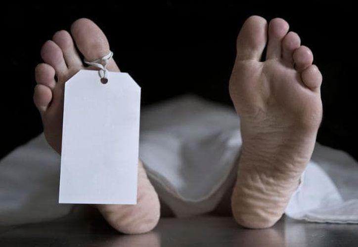 """""""Rubius"""", como le decían por el tono de su piel y cabello, murió de seis tiros frente a los ojos de sus padres Raúl Torres, Araceli Castillo, y de sus hermanos pequeños. (Pixabay)"""