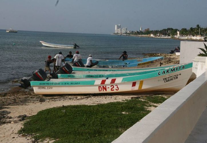 """Las embarcaciones dedicadas a la pesca comercial se encuentran agrupadas en dos cooperativas: """"Isla de la pasión"""" y """"Cozumel"""". (Irving Canul/SIPSE)"""