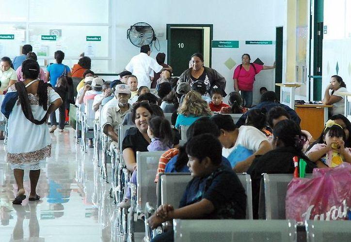 Buscan crear vacunas contra males que afectan a yucatecos. (Milenio Novedades)