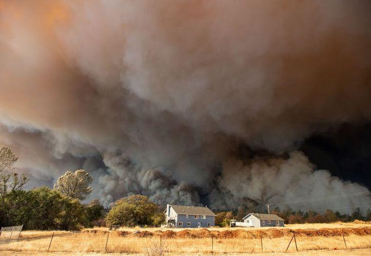 Los incendios en California, Estados Unidos, son cada vez más frecuentes y violentos. (AFP)