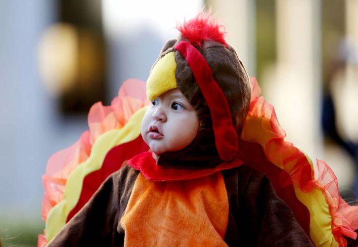 El pequeño Carmelo Suarez se unió con un simpático disfraz a los festejos públicos del Día de Acción de Gracias en Houston, Texas. (AP)