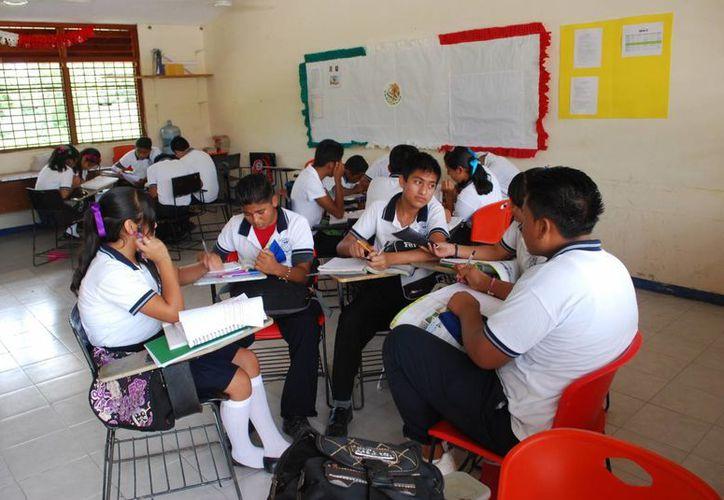 Expertos de Quintana Roo colaborarán en el contenido del nuevo libro. (Cortesía/SIPSE)