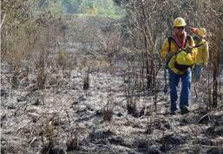 Las lluvias ayudaron a controlar y sofocar incendios. (Contexto/Internet)