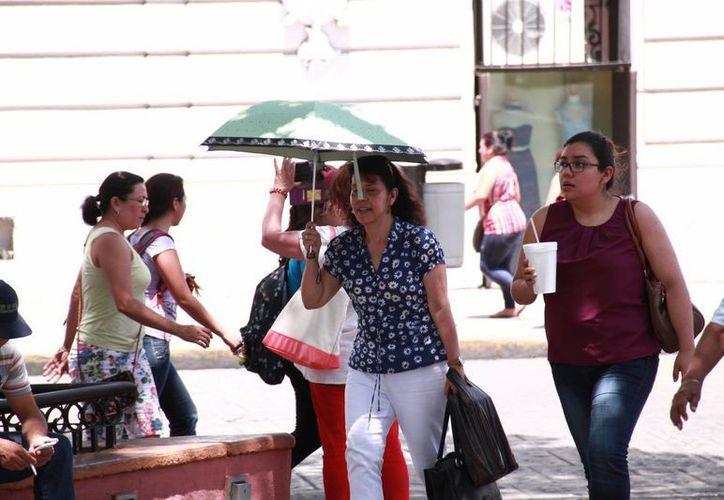Para esta semana la Conagua pronostica temperaturas de calurosas a muy calurosas para Yucatán. (Jorge Acosta/Milenio Novedades)