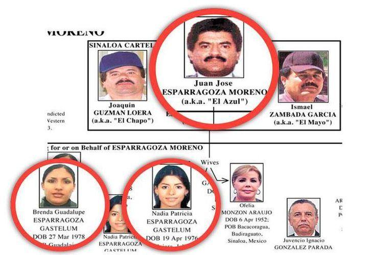 José Juan Esparragoza Jiménez, supuesto hijo de Juan José Esparragoza Moreno, El Azul (foto),  fue arrestado en Sinaloa el 20 de agosto de este año. (historiasdelnarco.com)