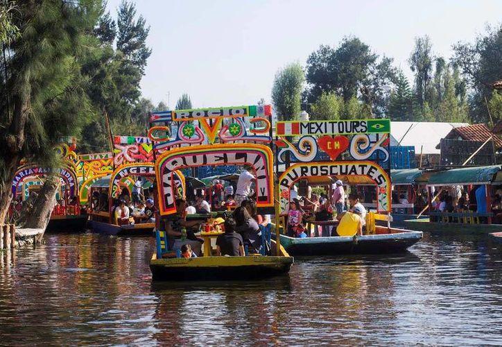 El proyecto de los estudiantes de la UNAM sobre la fauna y flora de Xochimilco consta de estampas, fotografías e ilustraciones. Imagen de contexto (Archivo/Notimex)