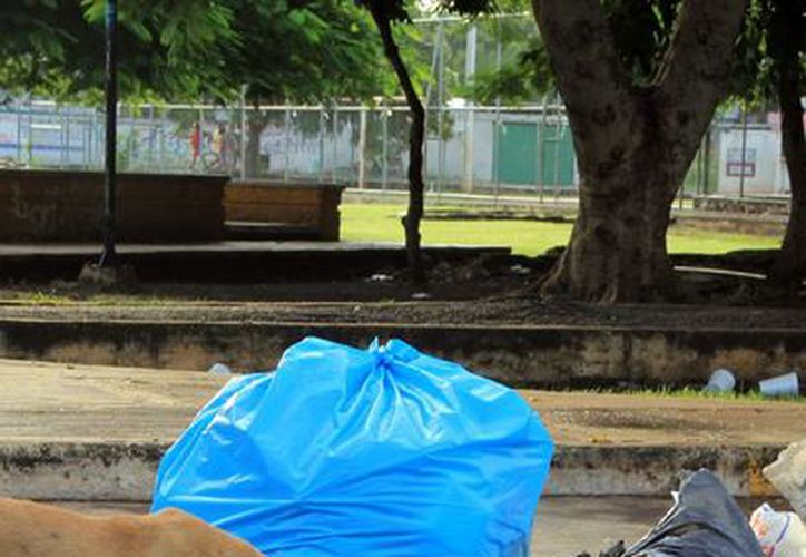Las autoridades pide no tirar desperdicios en las calles. (Milenio Novedades)