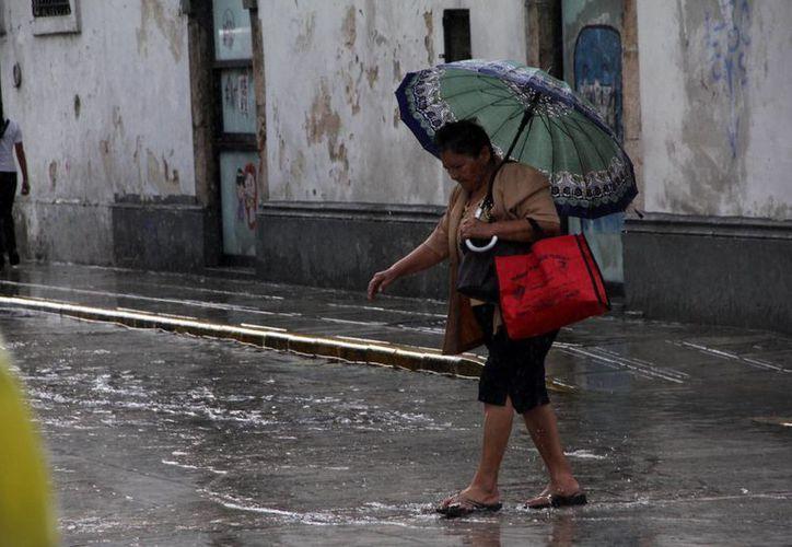 Para los próximos días se esperan lluvias vespertinas en la mayor parte del territorio yucateco. (Milenio Novedades)