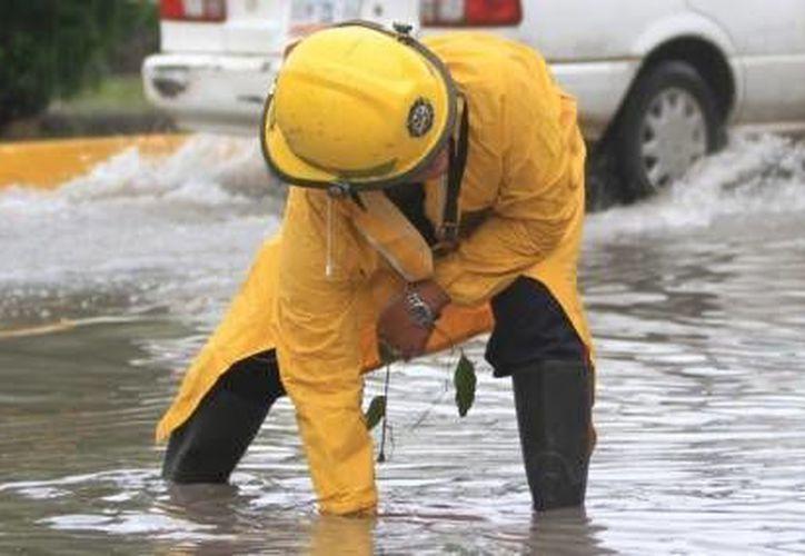Personal del H. Cuerpo de Bomberos trabaja en el desazolve de pozos. (Cortesía/SIPSE)