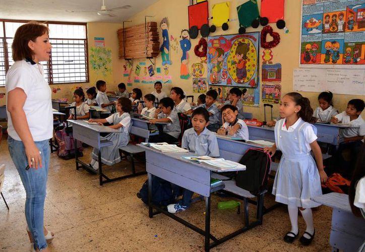Mil 209 aspirantes ingresaron sus datos a la página del Servicio Profesional Docente. (Victoria Gónzalez/SIPSE)