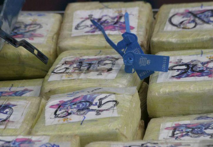 La droga, procedente de Sudamérica, estaba bajo el piso de madera del contenedor de un buque. (EFE)