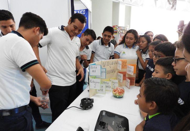 La mayoría de los clubes que se tienen registrados se crearon en escuelas, pero también hay grupos de scouts y de ciudadanos. (Adrián Barreto/SIPSE)
