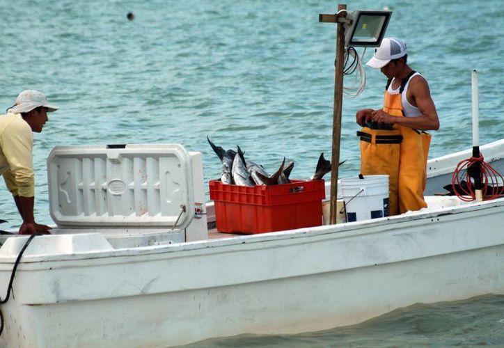 La doble radiación solar provoca la degeneración macular en pescadores. (Milenio Novedades)