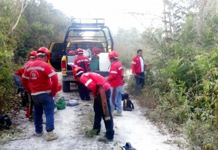 Se enviaron 32 brigadistas para combatir el incendio, a fin de evitar su propagación. (Javier Ortiz/SIPSE)