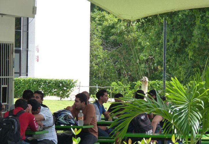 La UT Riviera Maya organiza el Seminario de Turismo Innovador. (Licety Díaz/SIPSE)