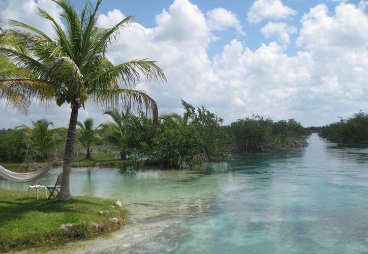 Los prestadores de servicios turísticos de Bacalar, han demandado la intervención de las autoridades ambientales. (Javier Ortíz/ SIPSE)