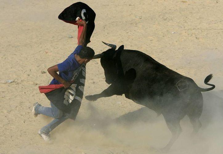 La polémica  de la muerte del toro en Turbaco ha llegado a tal extremo que el Gobierno emitirá este lunes un comunicado para manifestar su postura ante este asunto. (Archivo/EFE)