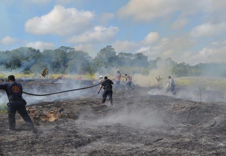 El incendio acabó con una hectárea de pastizales que  se usaban como un potrero. (Redacción/SIPSE)